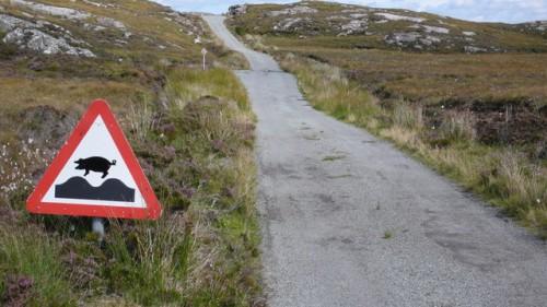 calum road 03 bumps